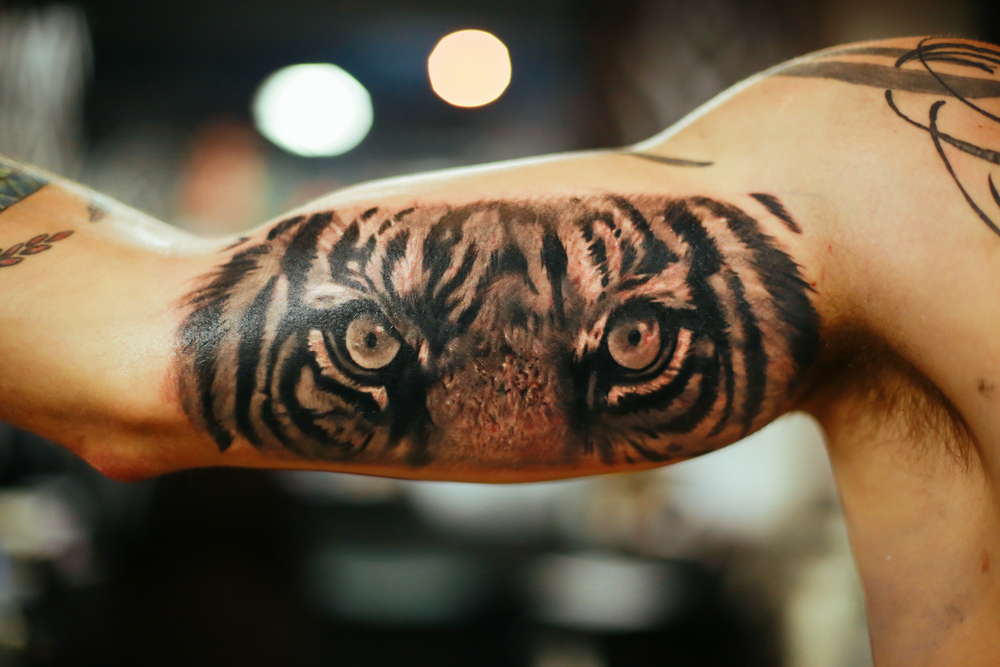 scoot-ink-tiger-eyes-complete-fresh-tattoo.jpg