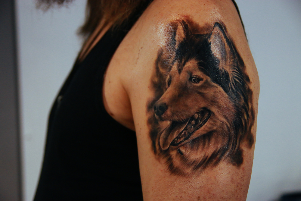 suno-park-tattoo-dog-healed.jpg