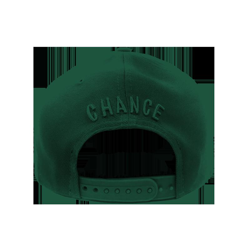 99570affcf0 ... best price chance 3 new era cap green silver 760e5 47289