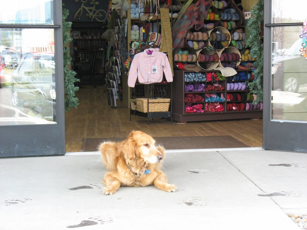 My Beloved Jackson in front of my old shop.