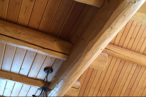 Siding paneling rouck bros log homes for T g wall panelling in bathroom