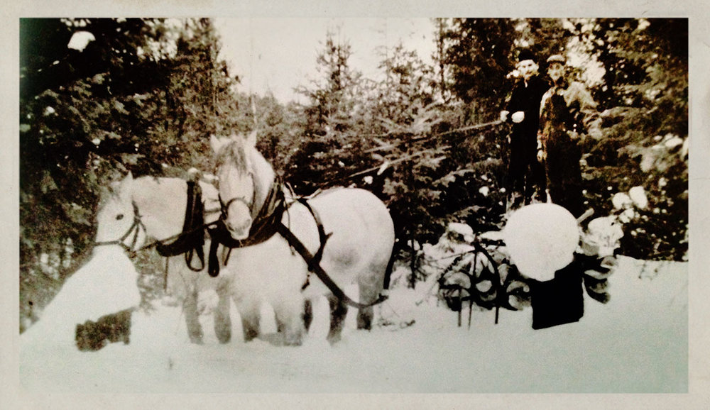 Jack Rouck. Moving Cord wood in Winter with the Horses - 1940's
