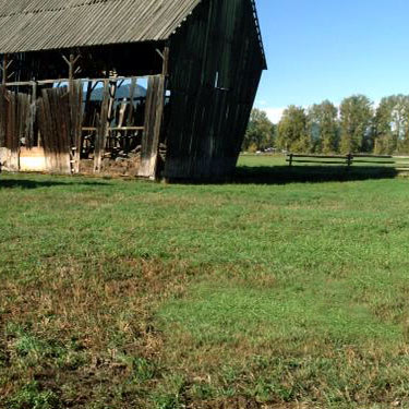RecycleOldTimbers-barn-w.jpg