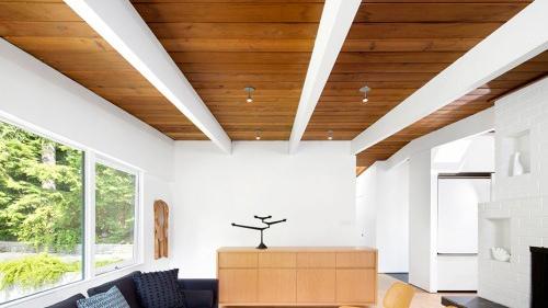 Rouck T&G Ceiling-a.jpg