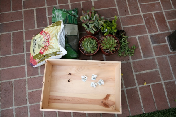wine crate planter.jpg