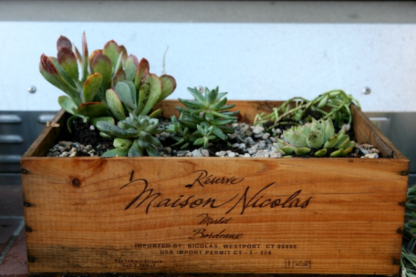 wine crate planter (1).jpg