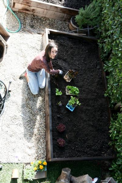 gardening in planters.jpg