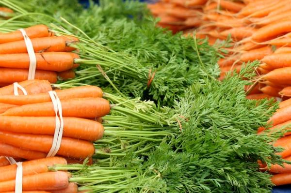 santa barbara farmers market pic.jpg