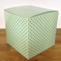 "YOU CHOSE MINT DOTS 4"" x 4"" x 4"""