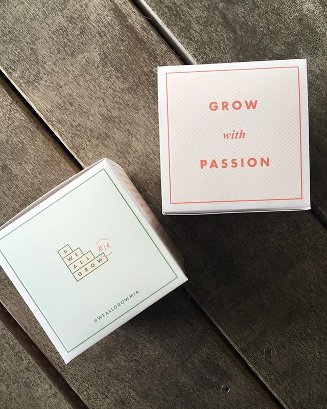 Another shot of the welcome boxes from #weallgrowmia 🌵#growwithpassion #brandedboxes