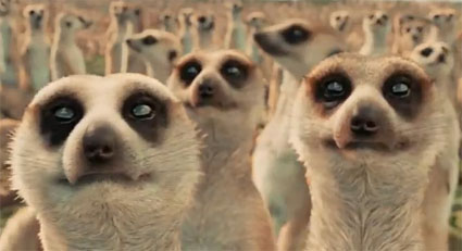 All right, you got me, I just picked the movie with thousands of meerkats.