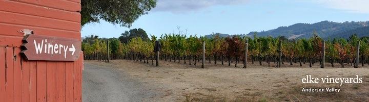 banner Winery.jpg
