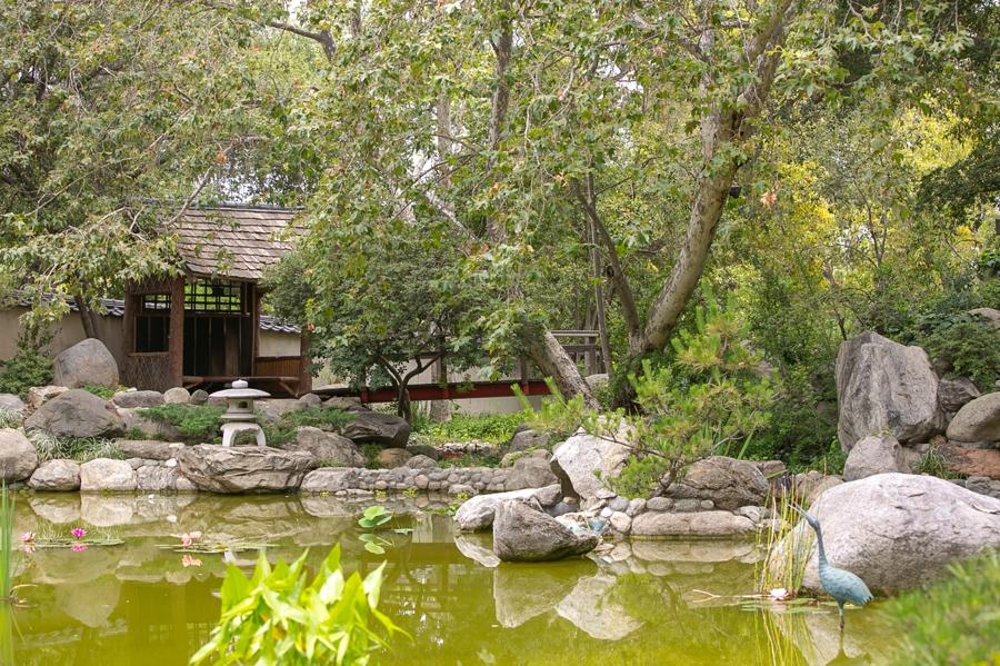 Arlington Garden Pasadena Wedding Images