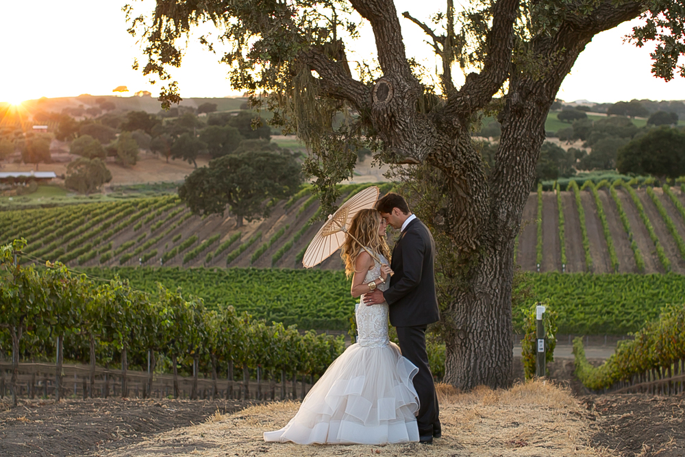 Stolpman Vineyard Private Estate Wedding