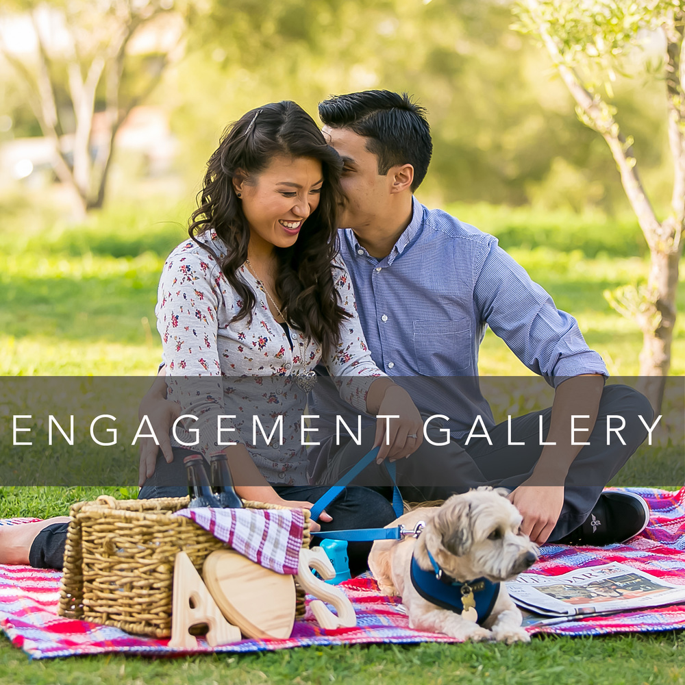 engagement_gallery_image.jpg