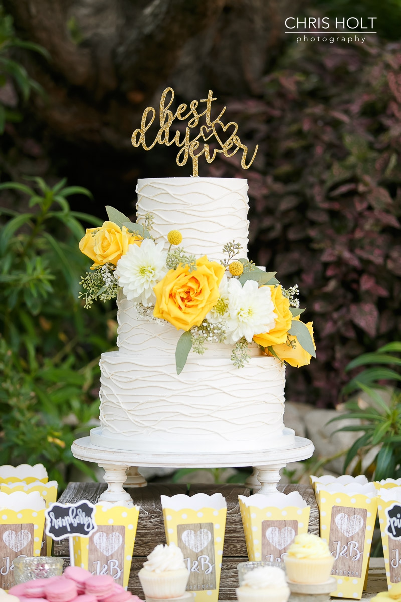 wedding cake, frost it cakery, maravilla gardens, camarillo, intimate wedding, casi cielo events and flowers, photographers near me, chris holt