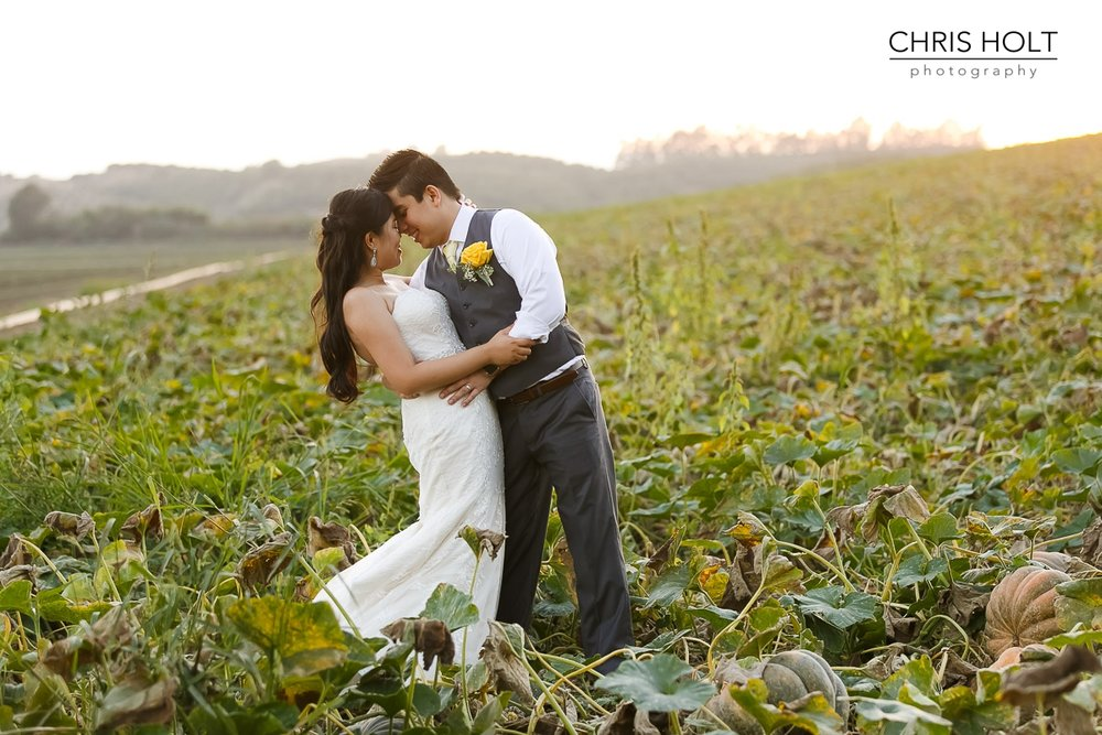 intimate portrait, sunset, couple, maravilla gardens, camarillo, intimate wedding, photographers near me, chris holt