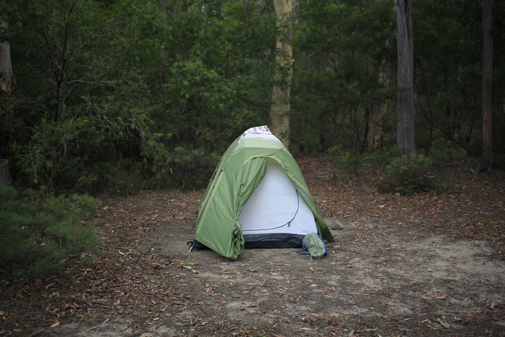 Campsite, Kangaroo Valley, 2016