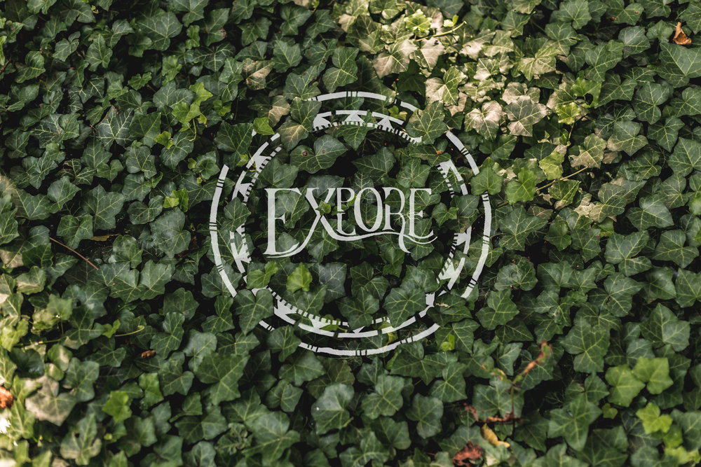 explore_02.jpg