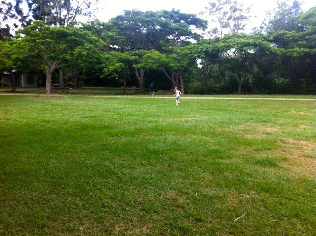 post_grass6