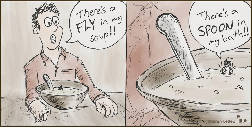 There's a fly in my soup - a super awesome cartoon from the Land of le beef by Darren Lebeuf