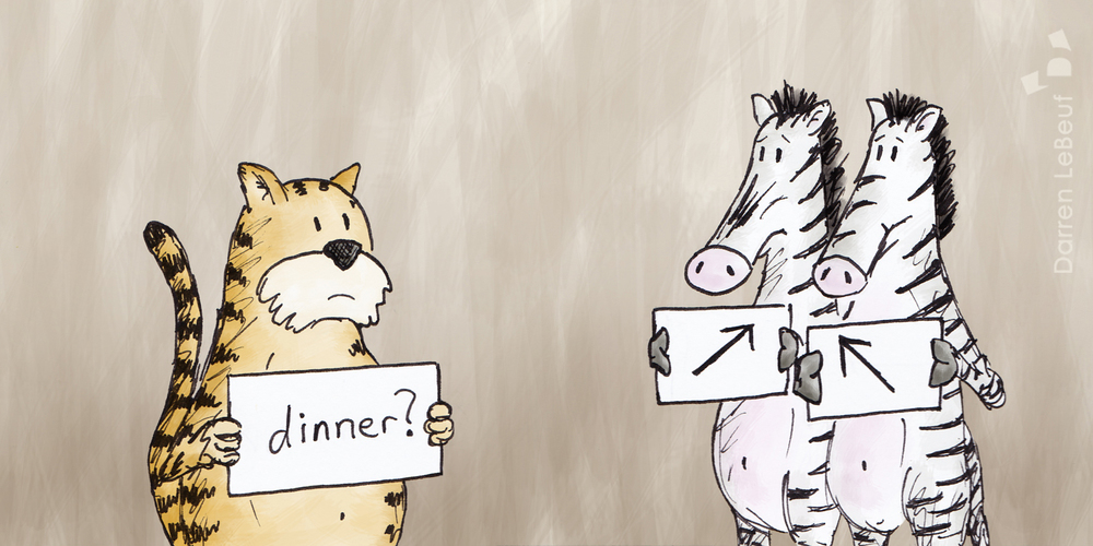 Tiger and zebras, at the Land of Le Beef by Darren Lebeuf