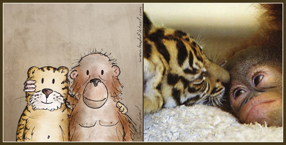 Unlikely animal best friends - tiger and orangutang. The Land of Le Beef comic strip, by Darren Lebeuf