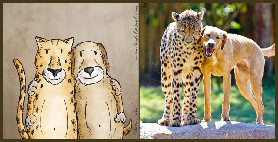 Unlikely animal best friends - labrador retriever and leopard. The Land of Le Beef comic strip, by Darren Lebeuf
