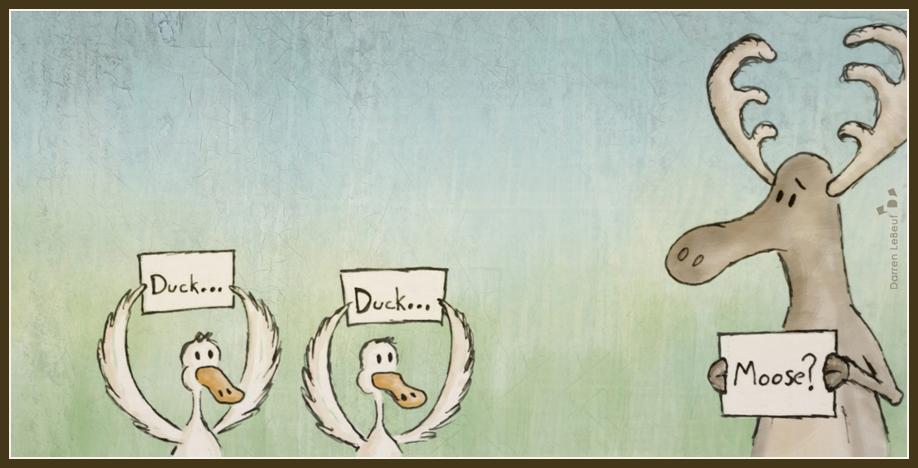 010_Duck-Duck-Moose.jpg