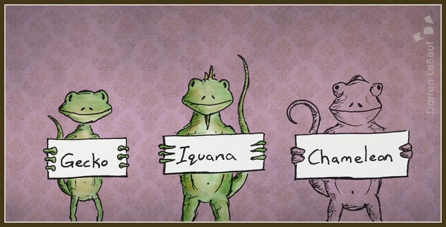 055_Chameleon.jpg