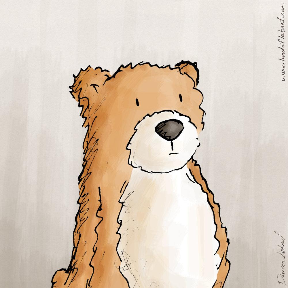 1606_Class-2016_00-Car-Bear.jpg