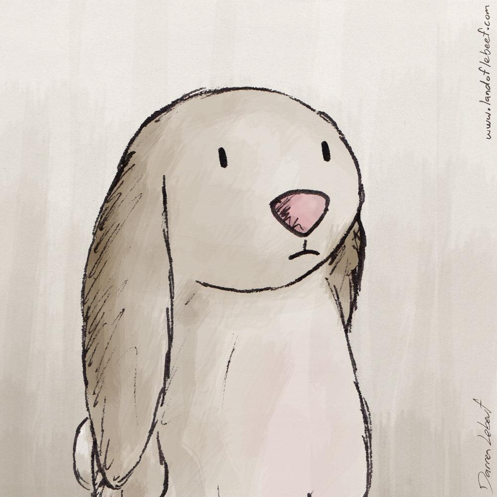 1606_Class-2016_Brown-Bunny.jpg