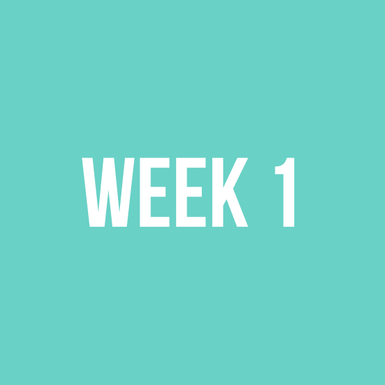 week 1.jpg