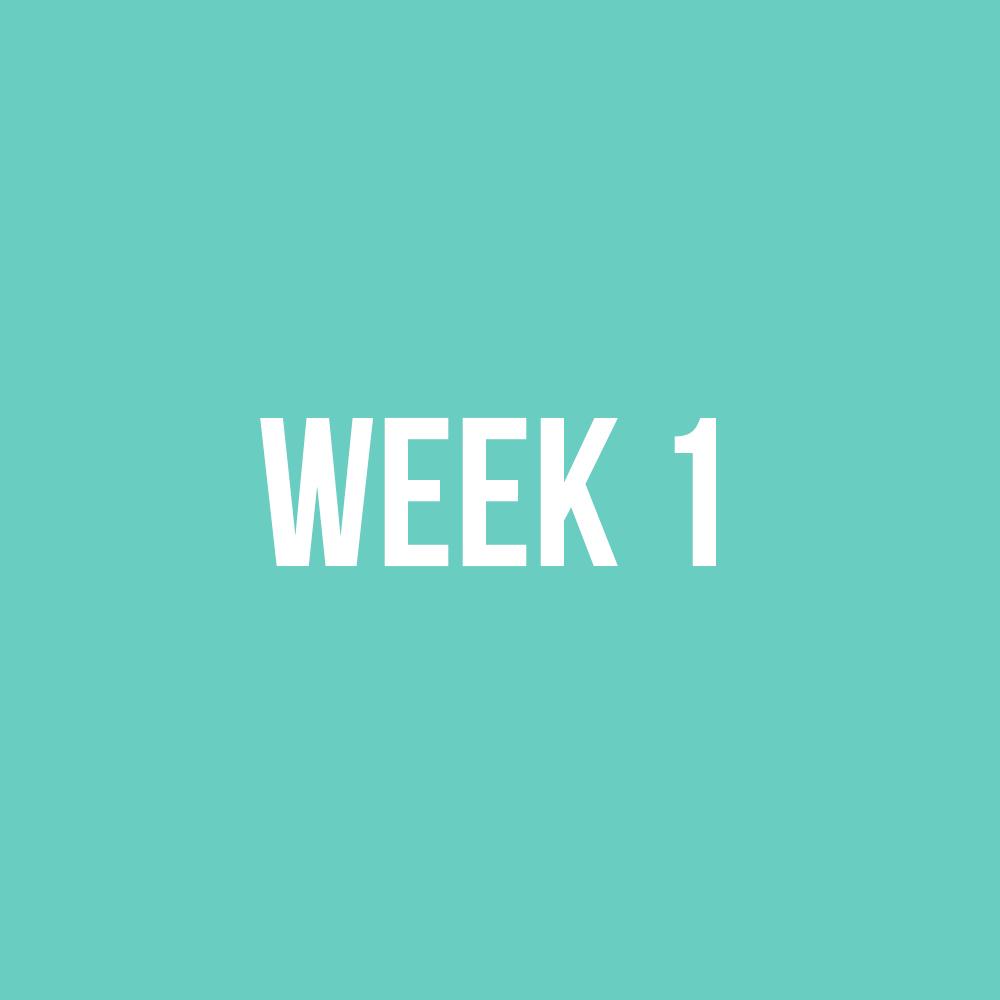 WEEK1.jpg