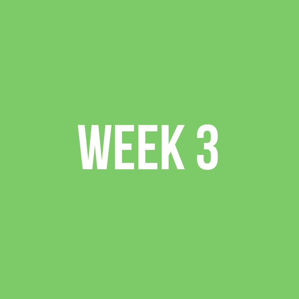 WEEK3.jpg