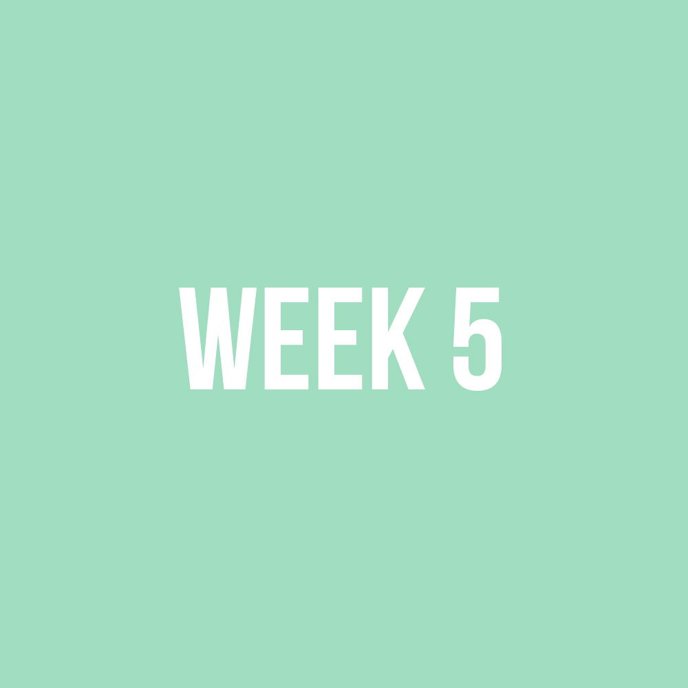 week5.jpg
