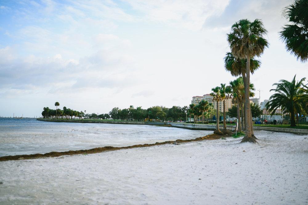 Northshore Beach, St. Petersburg, FL ©2017 Rebecca J. Imagery