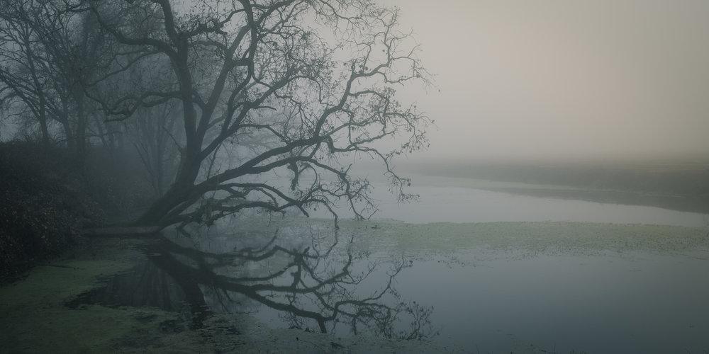 Foggy Creek - West Sac.jpg