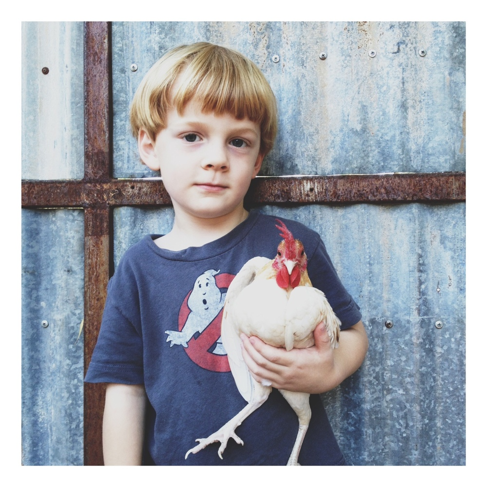 Viggo, and his little bantam rooster named Tricky.  This might be my favorite picture...ever.