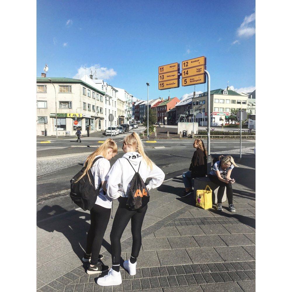 Bus stop in downtown Reykjavík