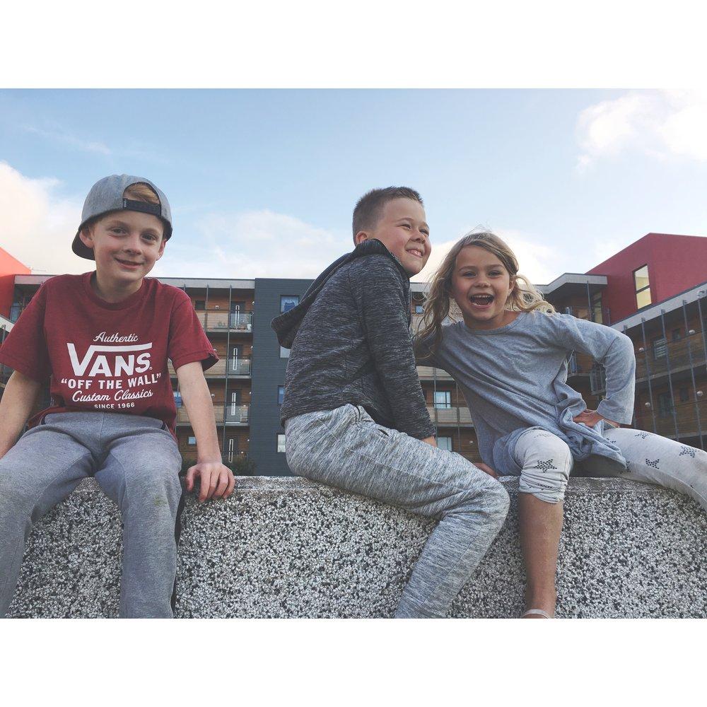Viggó, Krummi and Ársol/Cousins