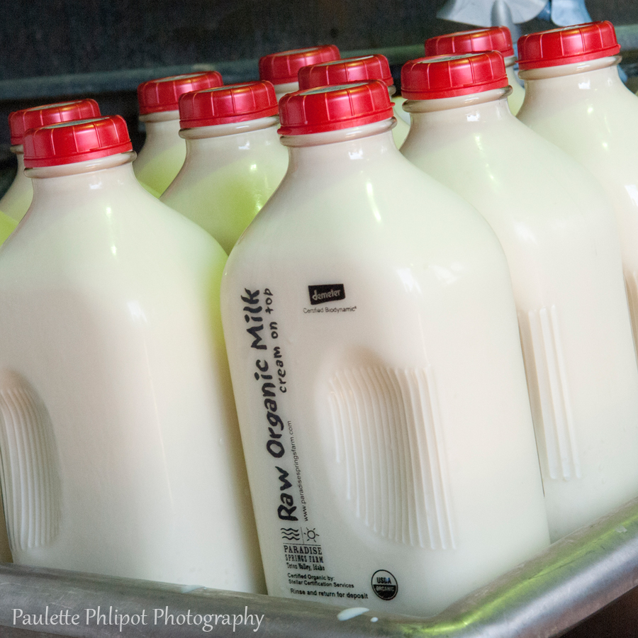 Paradise Springs Farm produces raw milk for grocery stores in Teton Valley, Idaho.