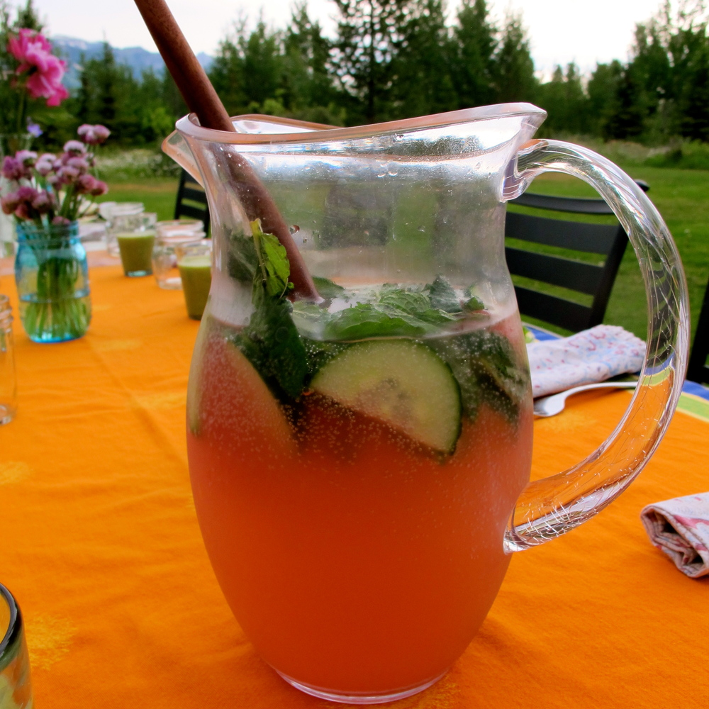 Watermelon Apple Cider Vinegar Tonic