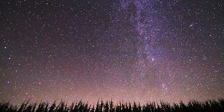 stargazing_TFM.jpeg