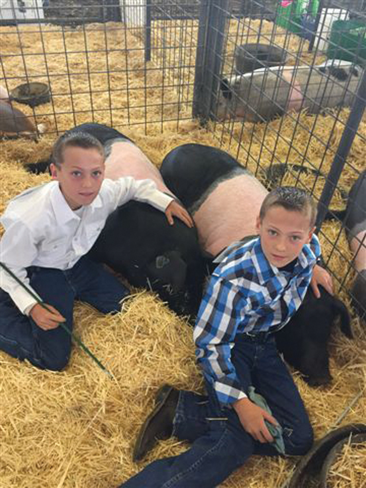 Cade and Garret Walz, and their pigs, all dressed up for a 4-H fair