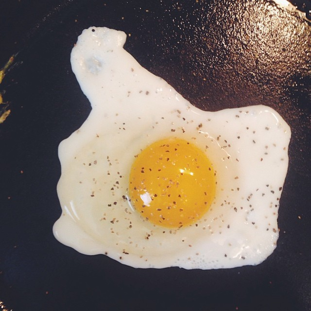 Shaina Sheaff made some eggs sunny side up. Chicken embryos keep ya warm.
