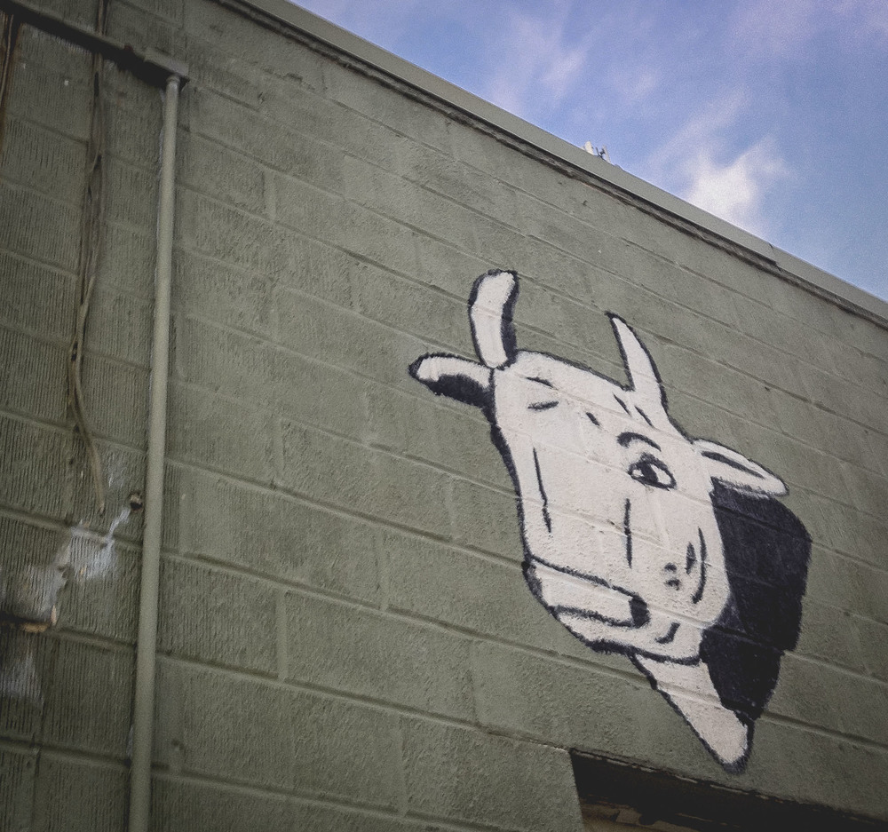 One of our favorite mini-murals in town is this beef head on the side of Dan's Meat and Produce.
