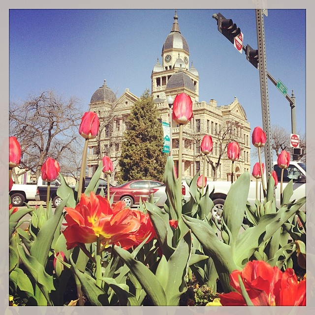 @stdavidsdenton caught a view of the square with the tulips in full bloom.