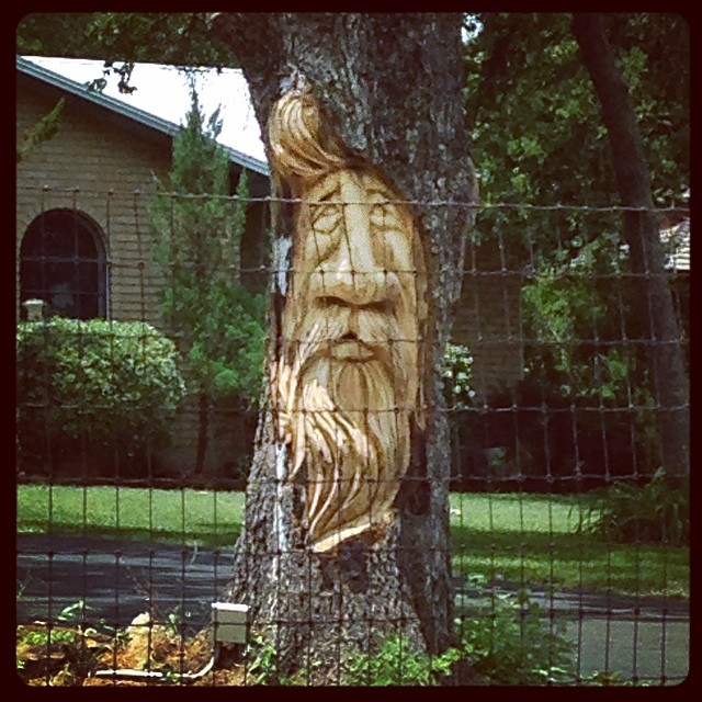 This takes yard art to a new level. Tree carving spotted by @cookiemomster.