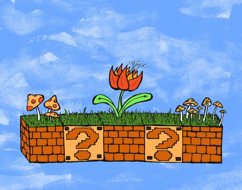 fire flower garden.jpg